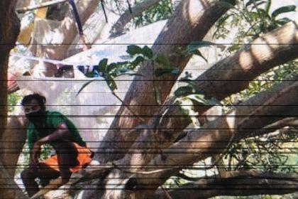 বাড়িতে জায়গা নেই, কোয়ারান্টাইনে থাকতে বৃক্ষবাসী সাত শ্রমিক