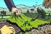 ভুমিদস্যুদের হাতে জিম্মি বরিশালের চর-আইচা বাসী !